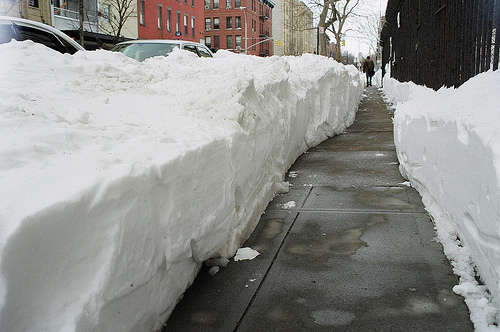 snowyny